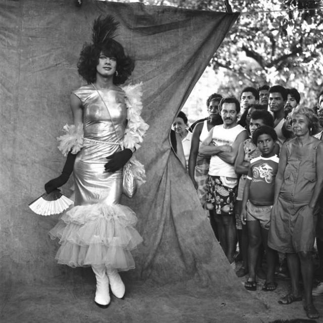 rogerio-reis-carnaval-na-lona-14