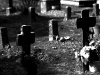 cimiteri_dimenticati_4.jpg